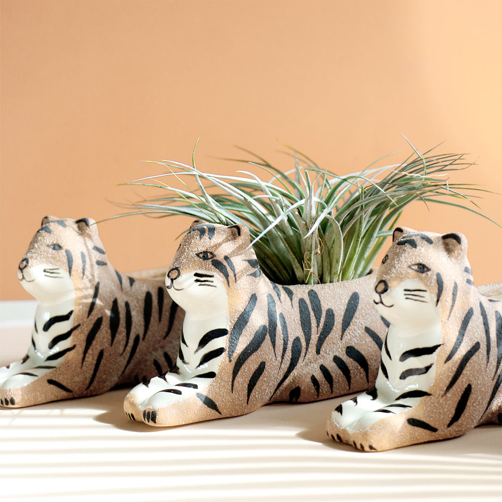 Bengal Tiger Planter