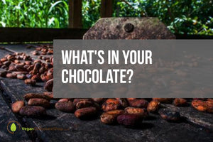 What's in your Chocolate?