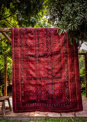 Antique Tribal Baluch Rug: Iran