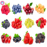 12 Kinds Of Delicious Berry Fruit Seeds Red Raspberry Blueberry Semillas De Bayas 200pcs