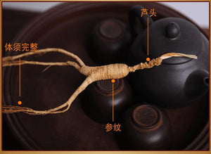 10g 28 Year Old Wild Ginseng Long Mingshen Jilin Changbai Mountain