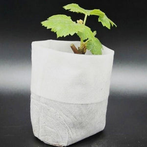 100pcs Nursery Pots Seedling Raising Bags