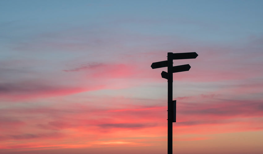 Silhouette of road sigmage during golden hour