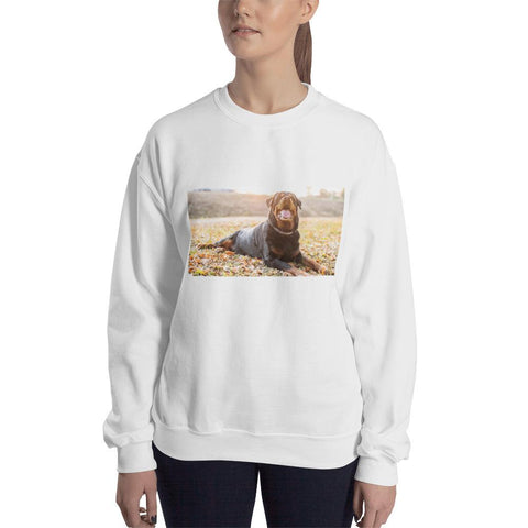 King - Sweatshirt-clothes-Rottweilers Shop