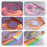 LED Dog Leash-Rottweilers Shop