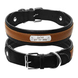 Personalized Collars for Rottweilers-Rottweilers Shop