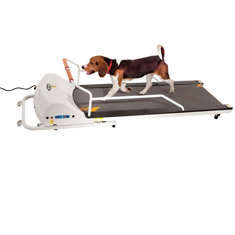GoPet PetRun PR720F Dog Treadmill (For Dogs up to 130 lbs) - Peazz.com