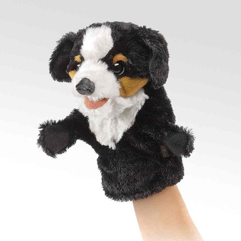Folkmanis 2963 Little Dog Hand Puppet - Peazz.com