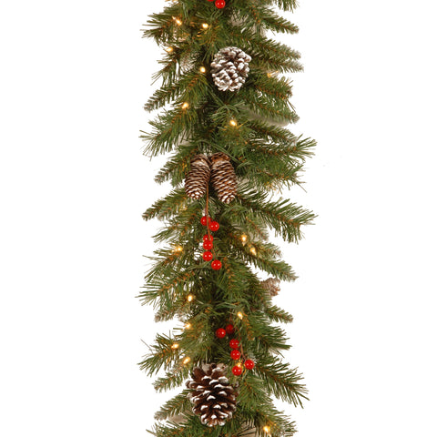 "National Tree FRB-9GLO-1 9' x 10"" Frosted Berry Garland with 100 Clear Lights"