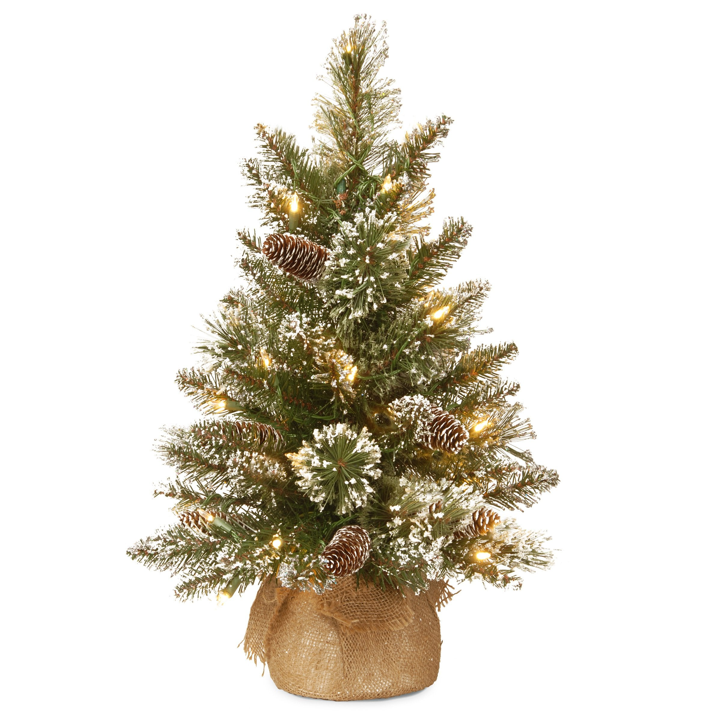 National Tree GB3-392-20-B1 2' Glittery Bristle Pine Burlap Tree with 7 White Tipped Cones & 15 Warm