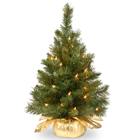 "National Tree MJ3-24GDLO-1 24"" Majestic Fir Tree in Gold Cloth Bag with 35 Clear lights"
