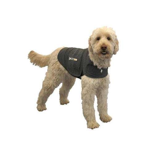 Thundershirt Medium Grey - Peazz.com