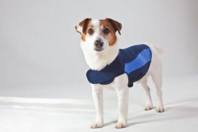 Thundershirt Extra Small Blue Polo - Peazz.com