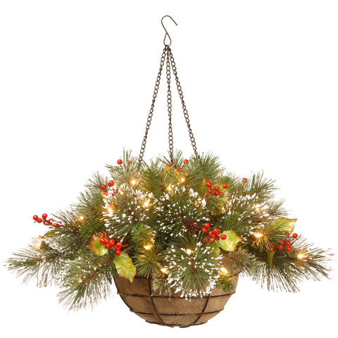 "National Tree WP1-388-20HB-1 20"" Wintry Pine Hanging Basket with 11 Cones and 35 Warm White Battery Operated LED Lights"