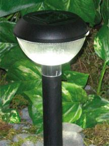 HomeBrite 30833 Solar Path Light - 12 Pack Natural Warm Light - PeazzLighting