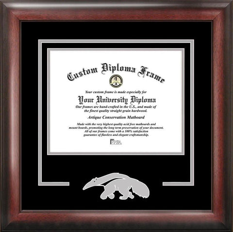 University of California, Irvine Spirit Diploma Frame - Peazz.com