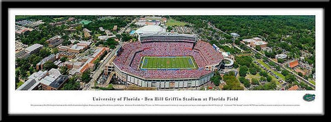 University of Florida Framed Stadium Print - Peazz.com