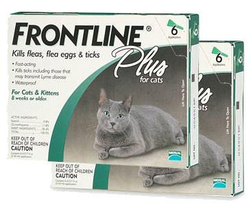 Frontline Plus Cats (12 Tubes) - Peazz.com