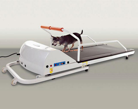 GoPet PetRun PR710 Dog Treadmill (For Dogs up to 90 Lbs) - Peazz.com