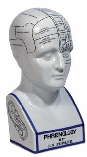 Authentic Models MG020 Phrenology Head - Peazz.com