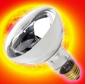 Trex Active Uv Heat Bulb 150w Flood - Peazz.com