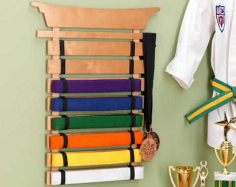 KidKraft 14245 Martial Arts Belt Holder - Peazz.com