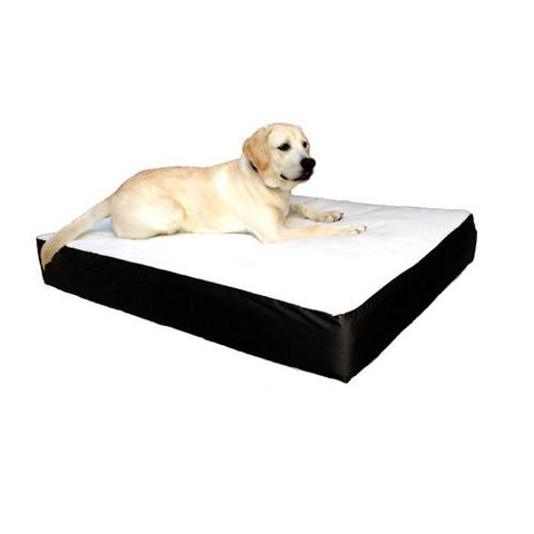 Majestic Pet Small/Medium 24x34 Orthopedic Double Pet Bed - Black - Peazz.com
