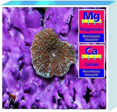 Saltwater Calcium Magnesium Test Kit - Peazz.com