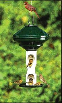 Avian Series Bird Feeder Sunfl Green  (Av2M) - Peazz.com