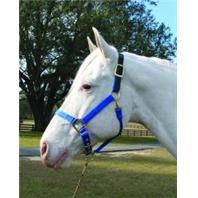 3-5 Adjustable Horse Halter with Leather Headpole - Blue Yearling (1DALSS YRBL) - Peazz.com