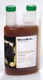 Hilton Herbs Echinacea Plus Gold - 2 Pint (71100) - Peazz.com