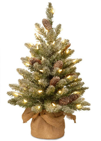 National Tree SR1-328-20-B 2' Snowy Concolor Fir Small Tree in Burlap with Snowy Cones & 50 Warm White Battery Operated LEDs with Timer - Peazz.com