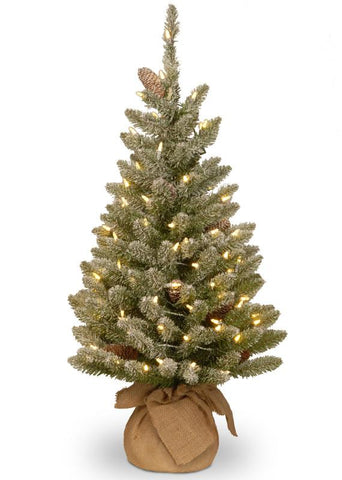 National Tree SR1-328-30-B 3' Snowy Concolor Fir Small Tree in Burlap with Snowy Cones & Warm White Battery Operated LEDs with Timer - Peazz.com