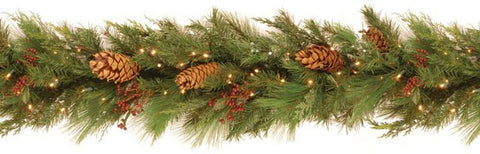 National Tree WHP13-300L-6B-1 6' White Pine Garland with Pine Cones and 100 Soft White LED Battery Operated Lights - Peazz.com