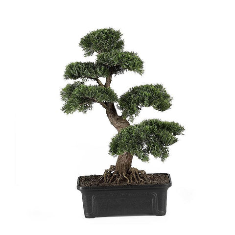 "Cedar Bonsai 24"" Silk Plant - Peazz.com"