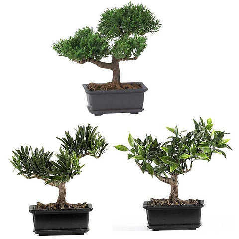 "8.5"" Bonsai Silk Plant Collection Set of 3 - Peazz.com"