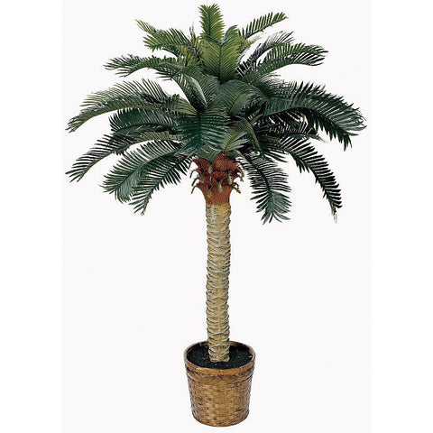 4' Sago Silk Palm Tree - Peazz.com