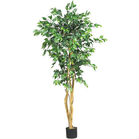 5' Ficus Silk Tree - Peazz.com