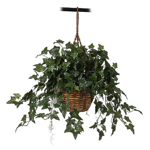English Ivy Hanging Basket Silk Plant - Peazz.com