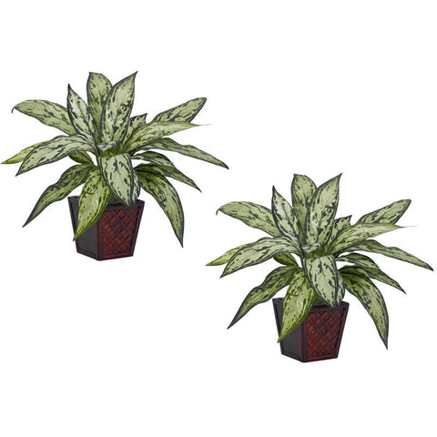 Nearly Natural 6694-S2 Silver Queen Silk Plant (Set of 2) - Peazz.com