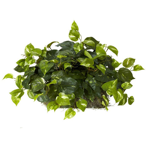 Nearly Natural 6708 Pothos Set on Foam Sheet Silk Plant - Peazz.com