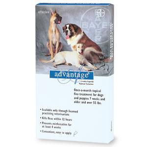 Advantage - For Dogs And Puppies Over 55 (6 Pack) (BLUE-100-6) - Peazz.com