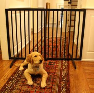 Cardinal Extra Tall Freestanding Pet Gate - Black - Peazz.com