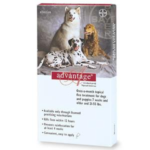 Advantage - For Dogs And Puppies 21-55 Lb (4 Pack) (RED-55-4) - Peazz.com