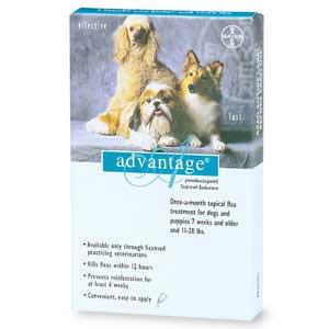 Advantage - For Dogs And Puppies 11-20 Lb (4 Pack) (TEAL-20-4) - Peazz.com