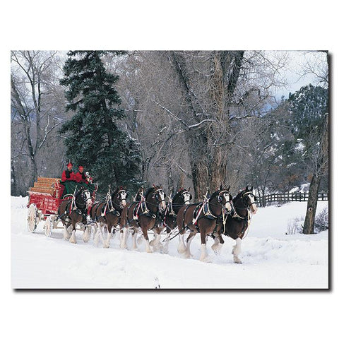 Trademark Commerce AB275-C2432GG Clydesdales - Snowing in Forest - 24 x 32Canvas - Peazz.com
