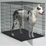 1154U Big Dog - Dog Crate Big Dog Crate 54In L X 35In W X 45In H - Peazz.com