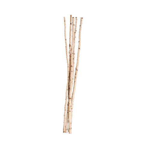 "1"" - 1 1/2"" Birch Poles X5 by Vickerman - Peazz.com"