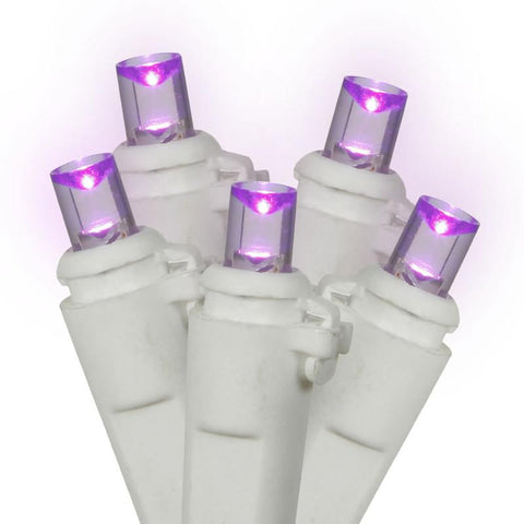 "Vickerman X4W0016 100 Light LED Purple/Ww WideAngle Ec 4""x34'L - Peazz.com"