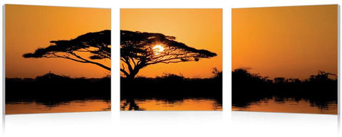 Wholesale Interiors PM-0134ABC Savannah Sunset Mounted Photography Print Triptych - Each - Peazz.com
